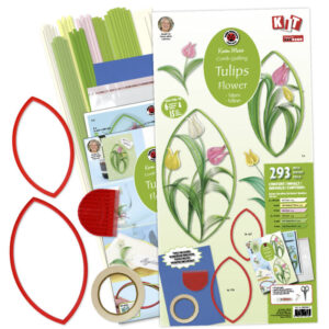 Easy starter tulips kit